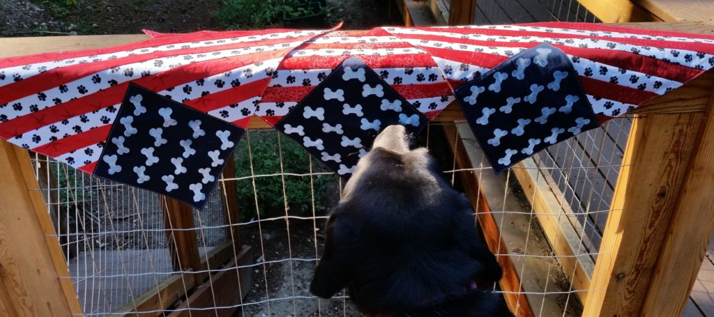 Thibodeaux is picking out his favorite scarf