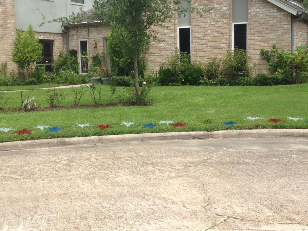 Star stencils on grass