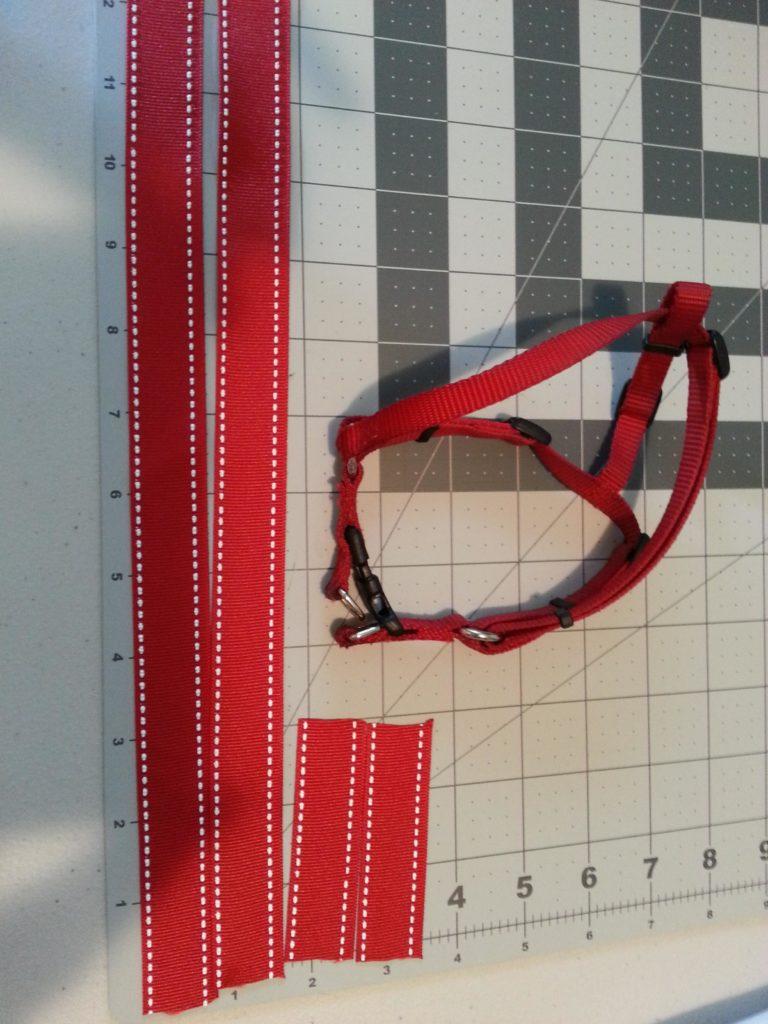 Measuring ribbon for the harness tutu