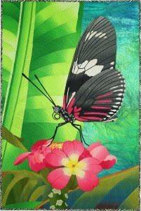 Caryl Breyer Fallert-Gentry Lepidopteran #4