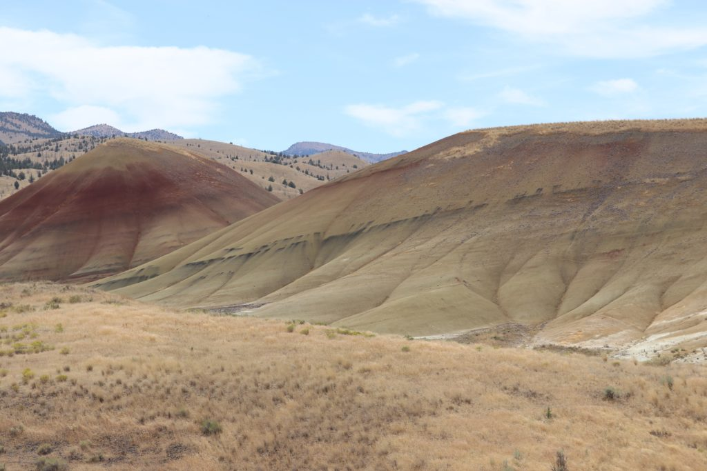 Original photo that inspired the painted hills quilt