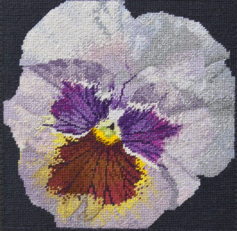 Counted cross stitch pansy canvas shading