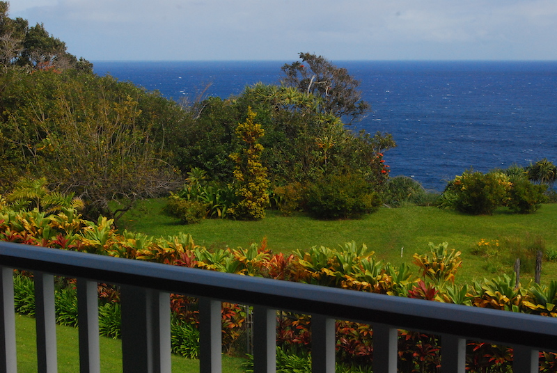 View of the ocean from Phyllis' studio
