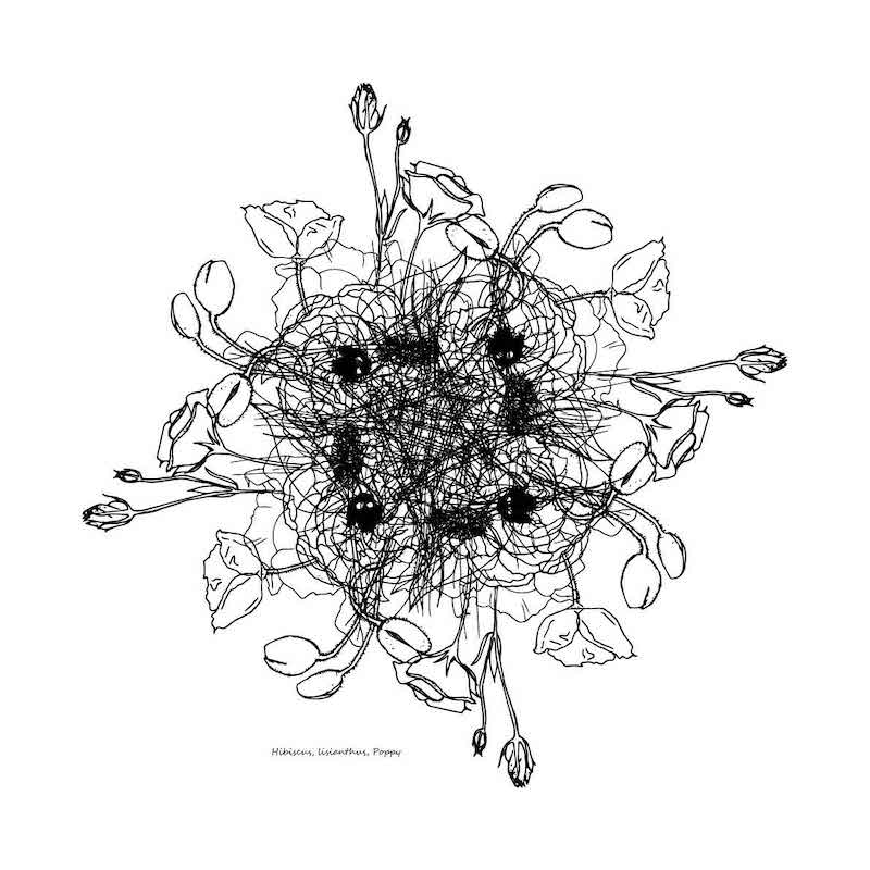 Flower Chaos by Ngaio Blackwood