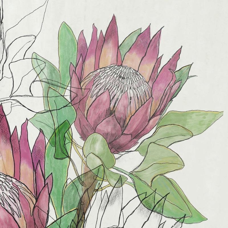Illustration and watercolor by Tara Axford