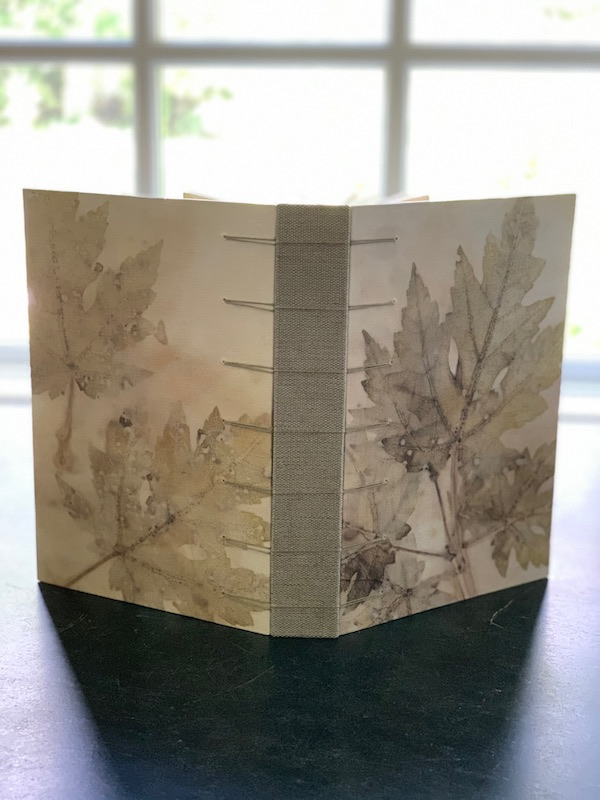 Silver Maple Book