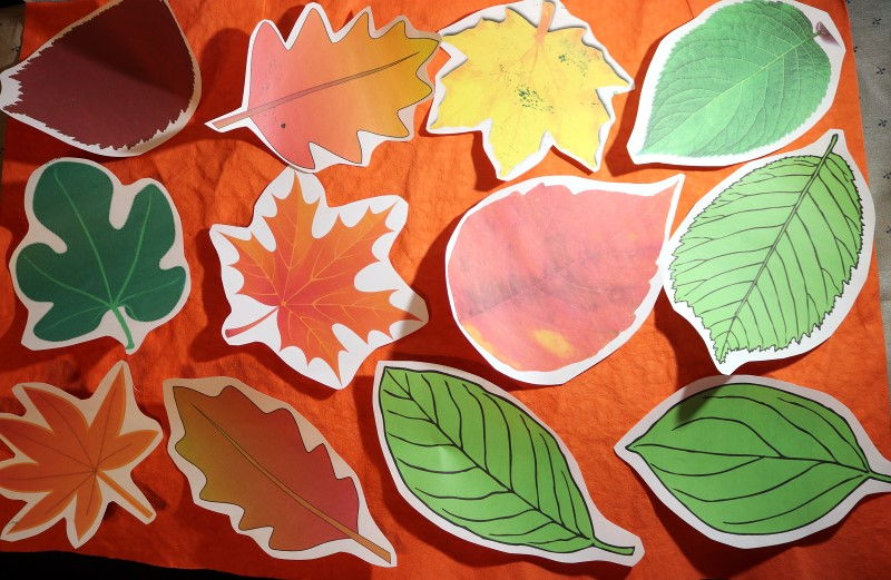 Kraft-tex Leafy Tablescape arrange freezer paper