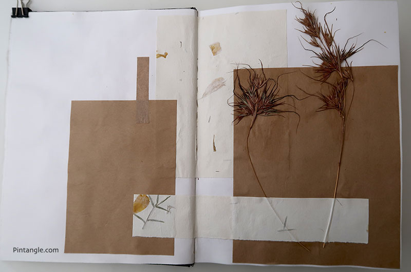 Sharon's journal: a collage of grasses picked at the end of summer on one of our morning walks.