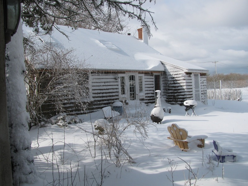 Rosemary's studio in the winter