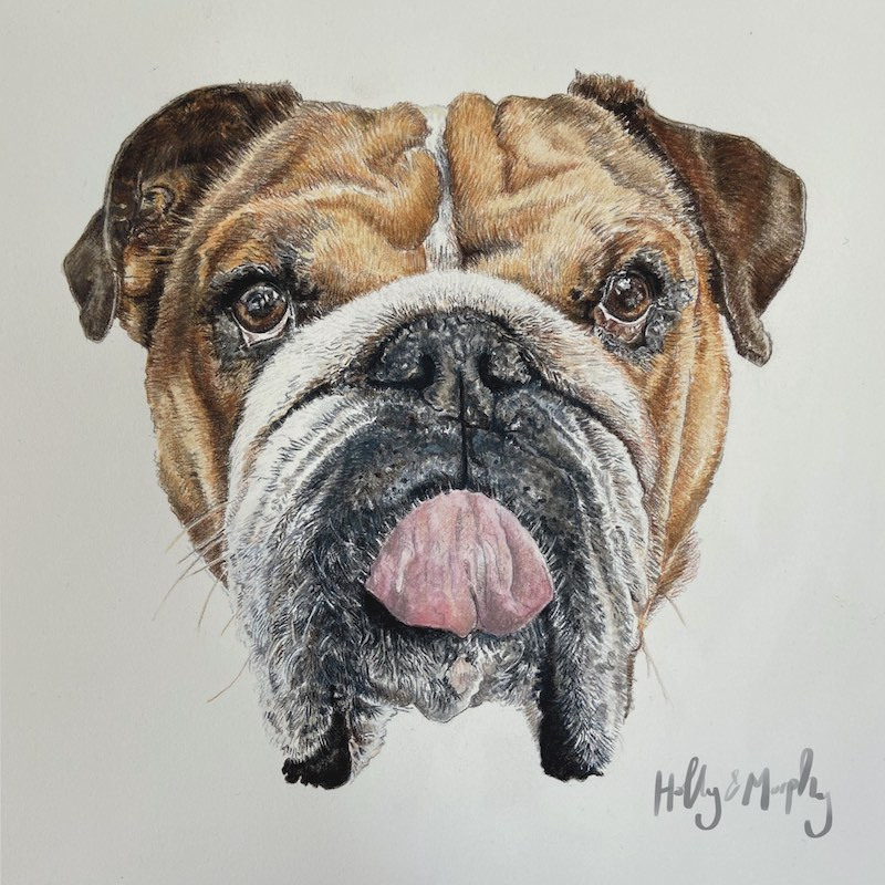 Spotlight: Holly Smith, Color Pencil & Watercolor Artist