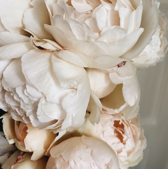 Teressa Johnson Flowers 3