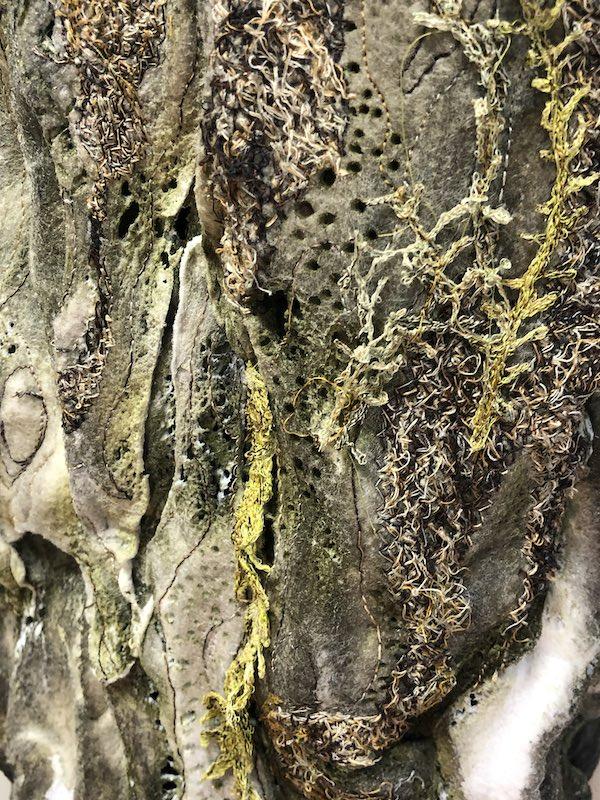 Tree Bark Fragment, detail
