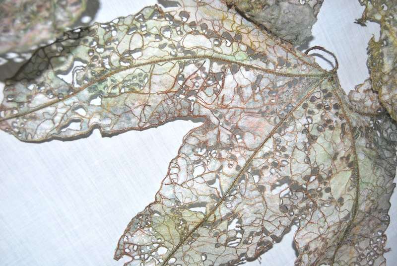 Leaf Fall, Hollyhocks, Detail 3