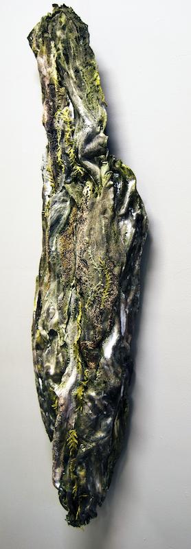 Tree Bark Fragment
